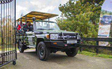 Toyota Land Cruiser 70 ultieme safariauto voor Beekse Bergen